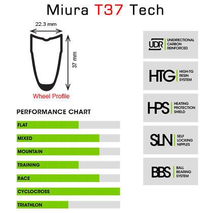 15-miura-t37-mp.jpg
